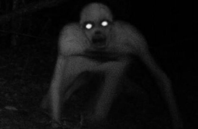 A Horrible Mysterious Beast in the USA
