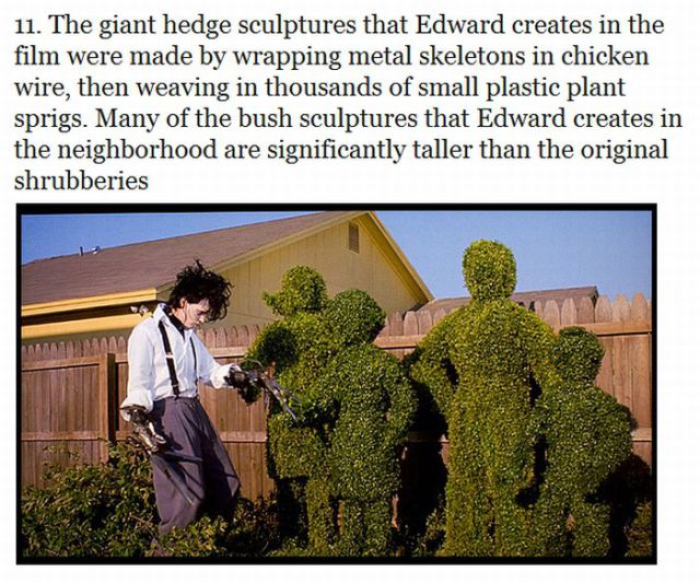 Interesting Facts about Edward Scissorhands Movie