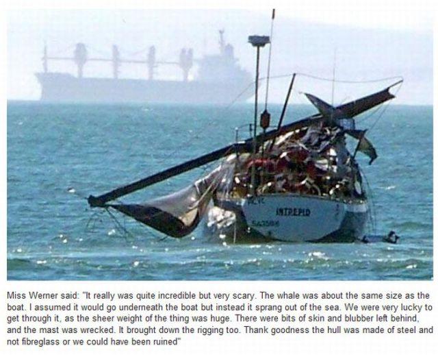 2010 Most Impressive Stunts and Crashes