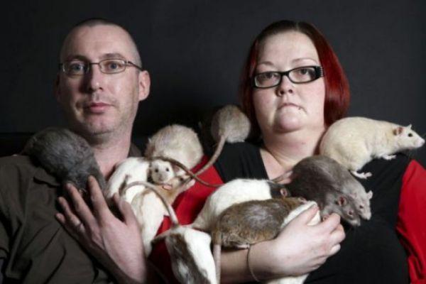 Uncanny Factoid: Ewww Rat Attack!