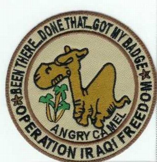 Cool American Military Patches