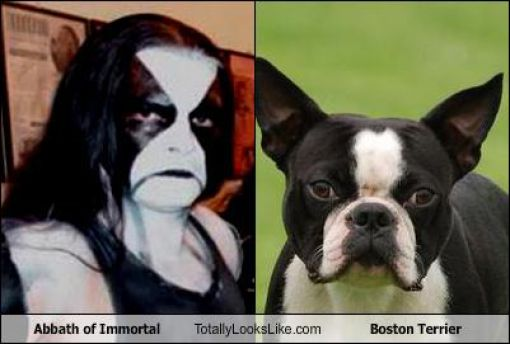 Funny Look Alikes. Part 5