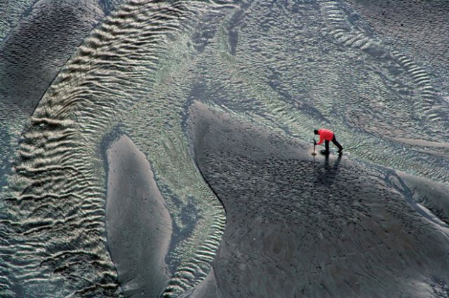 Some Amazing Nature Photography