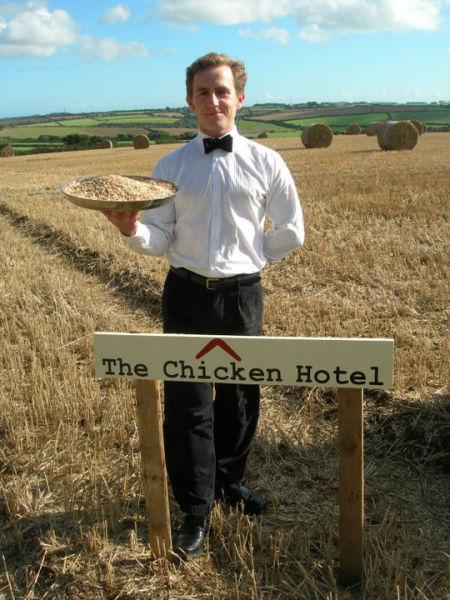 Uncanny Factoid: Chicken Hotel