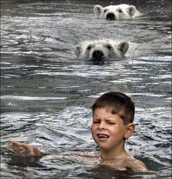 Shocking Photos!