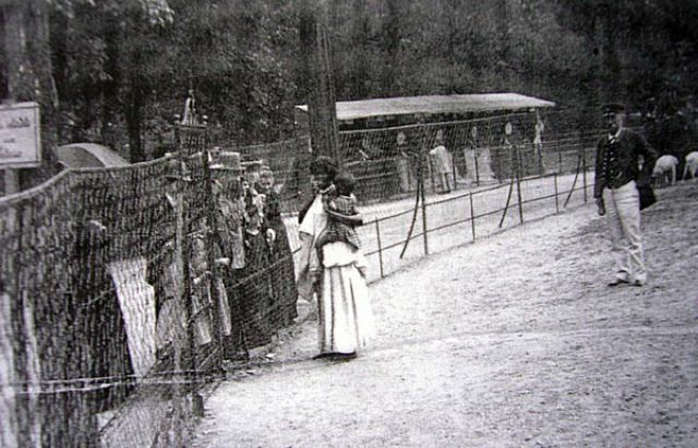 Human Zoos or Negro Villages