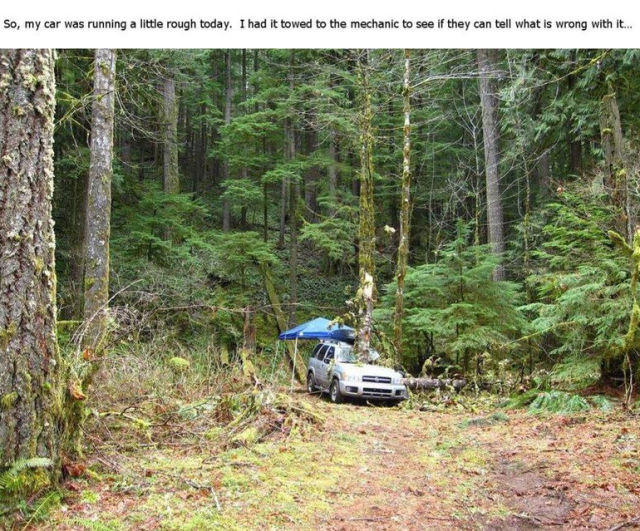 Be Careful When You Go Camping in the Woods
