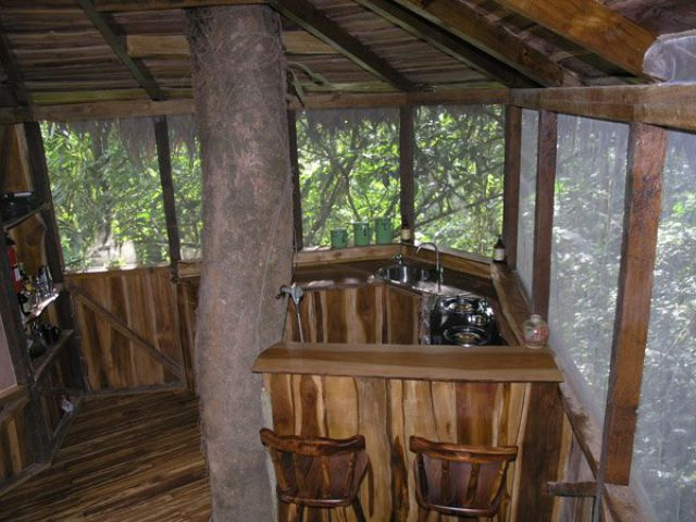 Incredible Tree House Community