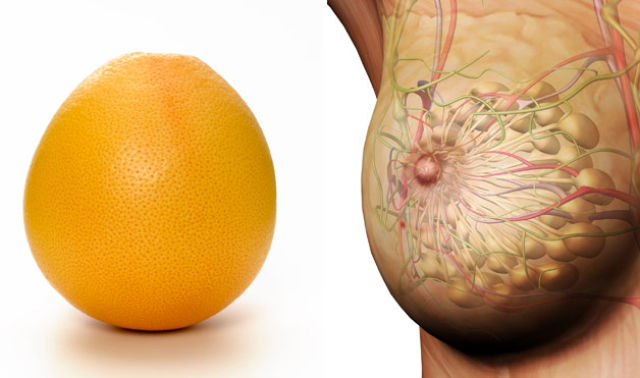 Foods That Resemble the Body Parts They Benefit