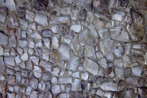 Uncanny Factoid: Fossil Cabin
