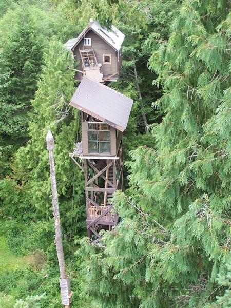 Some Shaky Treehouses