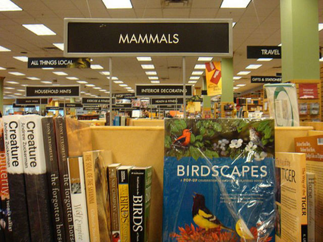 Conflicts in the Bookstore