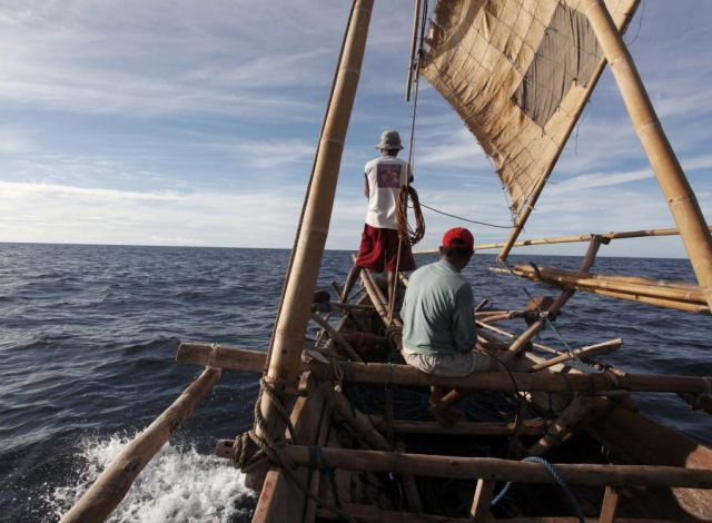 Whale Hunting in Indonesia