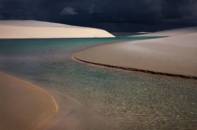 Beautiful Oasis in the Desert
