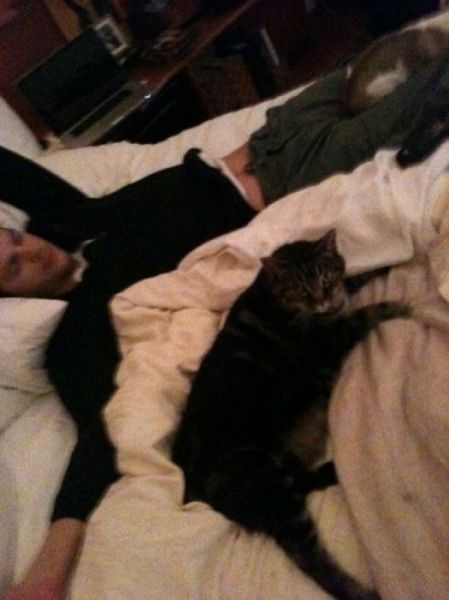 Twitter Pics of Ashton and Demi