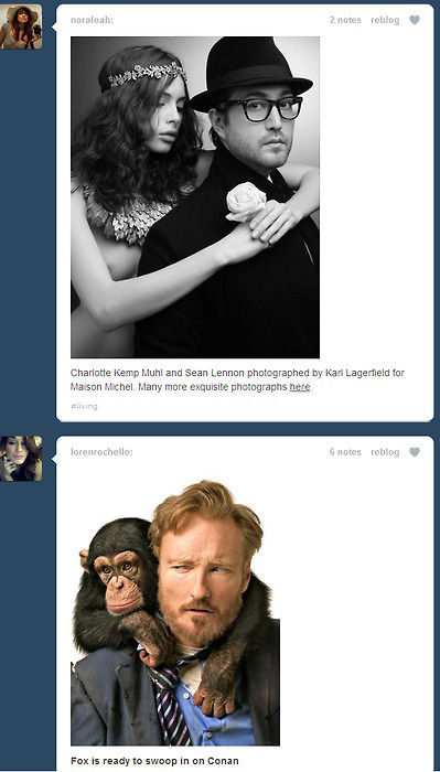 Funny Tumblr Dashboard Coincidences