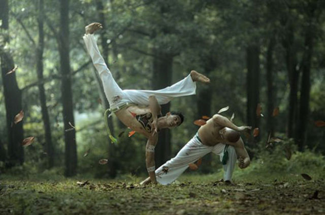 Amazing Action Photos