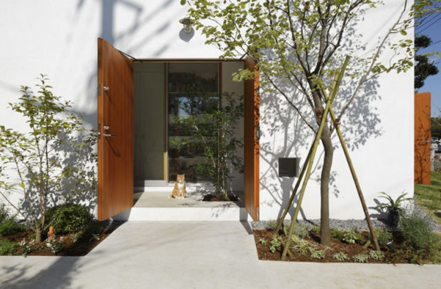 Inside Out Home for Both Cats and Humans