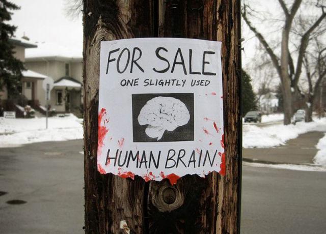Humorous Signology
