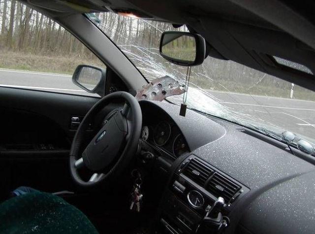 Driver is a Lucky Beggar