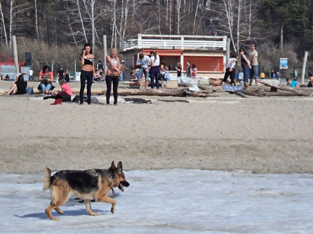 Beach Season Opened with Skiing