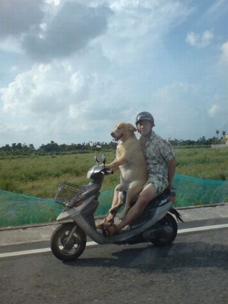 Daily picdump [WEEKEND EDITION]