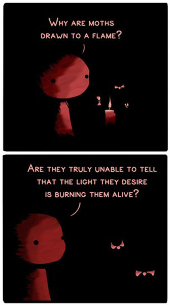 Why Are Moths Drawn to a Flame