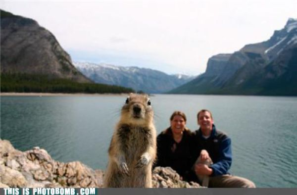 How to Spoil a Photo. Part 12
