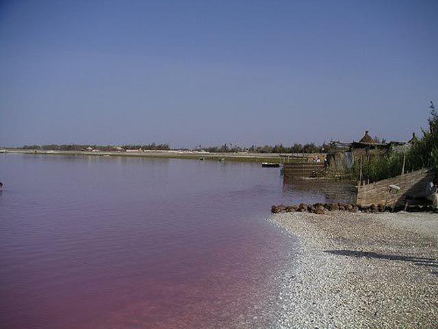 A Pink Lake