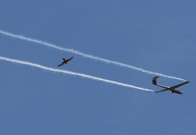 Amazing Air Show by the US Air Force