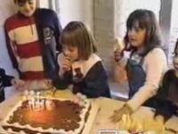Squirrel Invites Itself to Birthday Party
