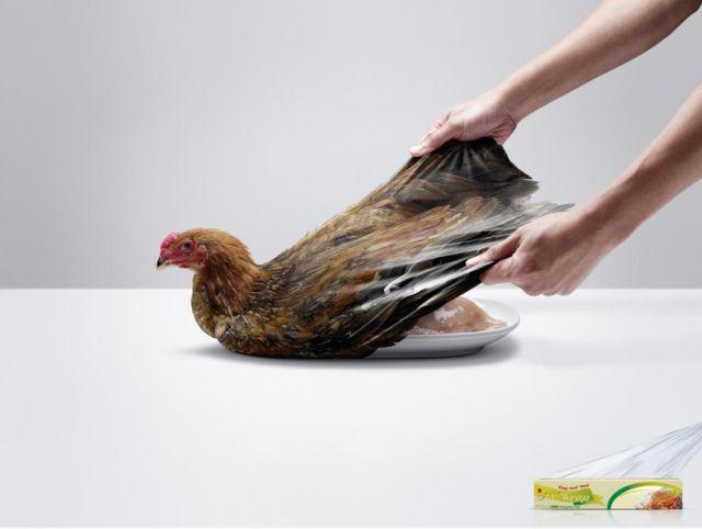 2011 Print Advertisements