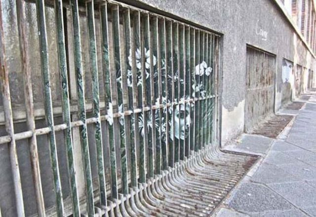 Illusion Paintings