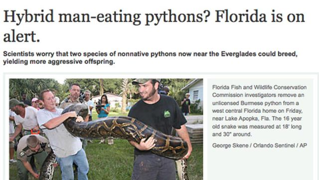 Florida: The Nuttiest State in The United States