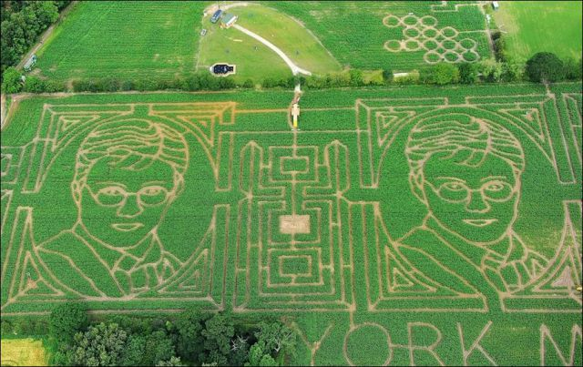 Gigantic Corn Mazes