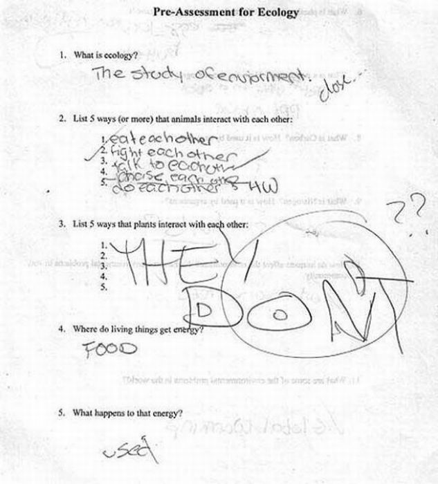 Funny Answers to Test Questions