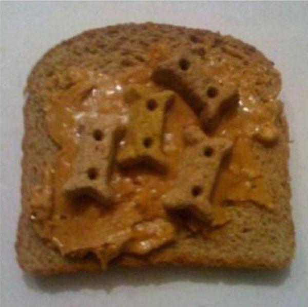 Minimalist Lunch for a Dog