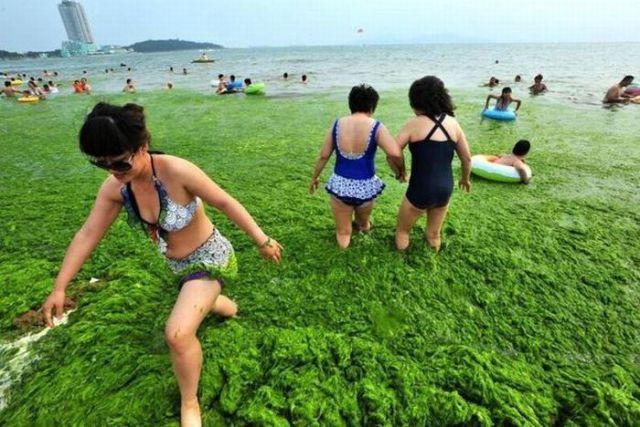 A Green China Sea