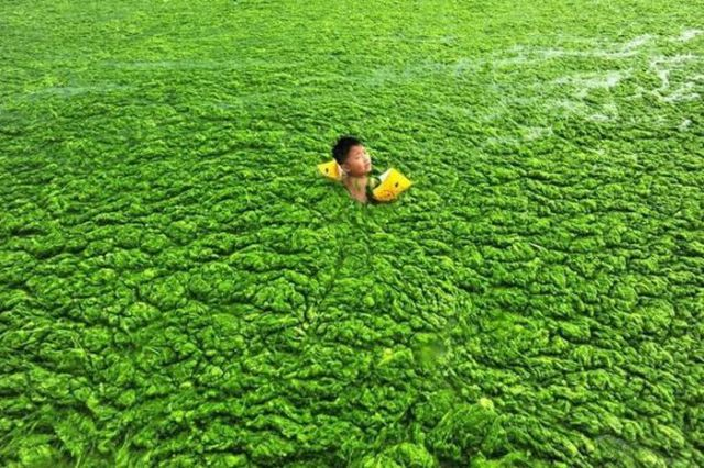A Green China Sea
