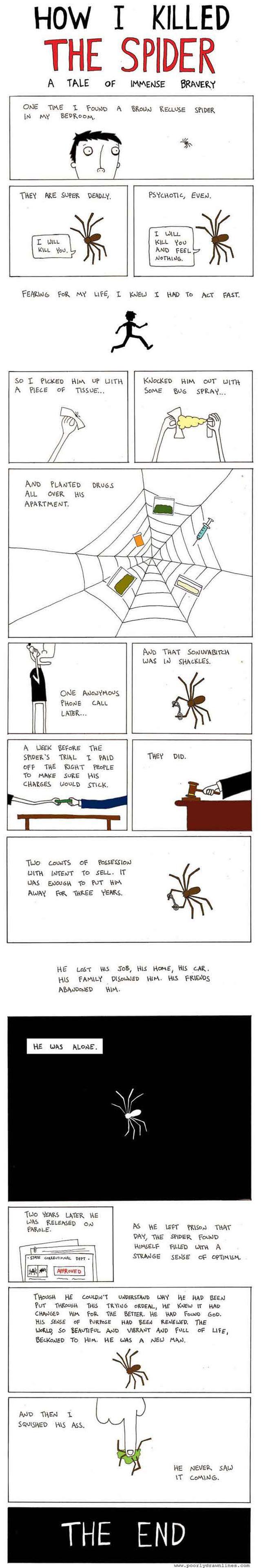That Spider Got What It Deserved