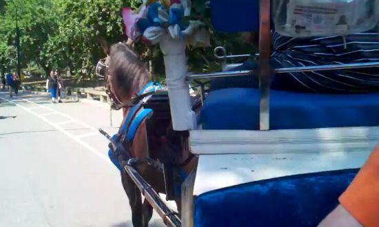 Woman's Insane Freakout [VIDEO]