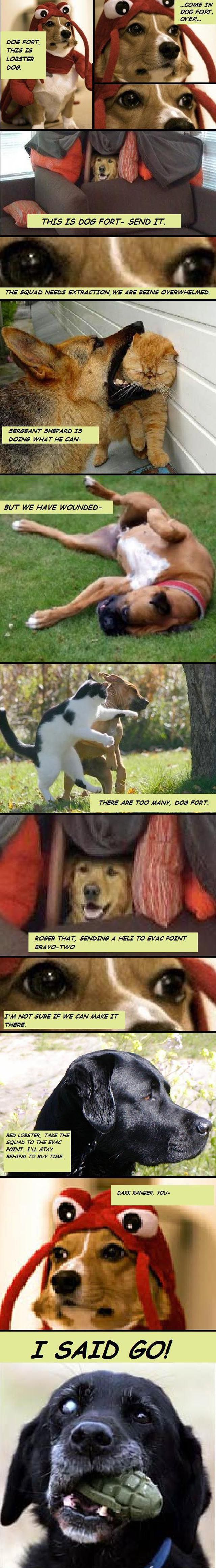 How War Dogs Really Work