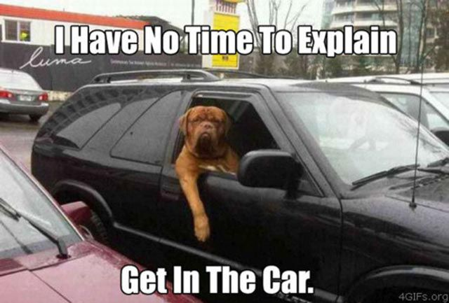 """Hilarious """"I Have No Time to Explain"""" Posters"""