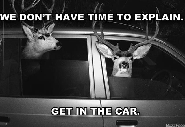 "Hilarious ""I Have No Time to Explain"" Posters"