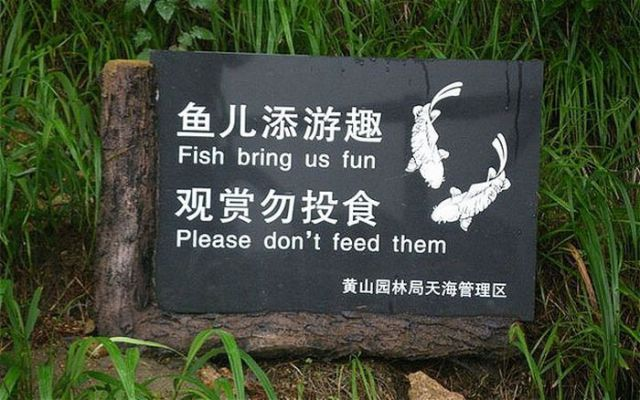 Funny Fails with Signs