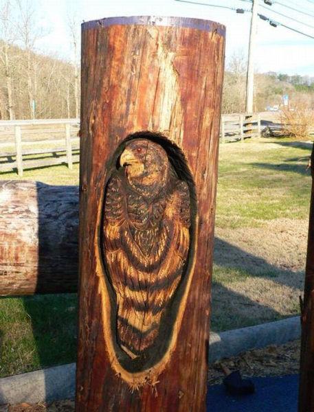 Incredible Wood Carvings