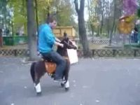 How to Ride a Pony...