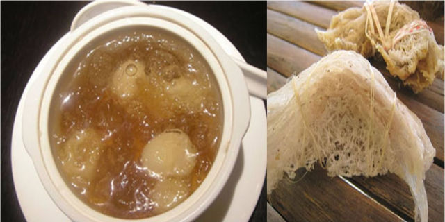 Completely Disgusting Food Dishes From Around the Globe