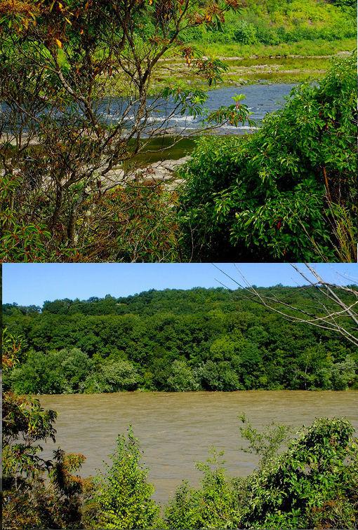 Destructive Hurricane Irene Before & After Photos