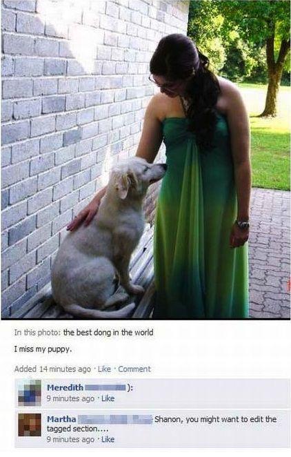 Hilarious Facebook Spelling Fails
